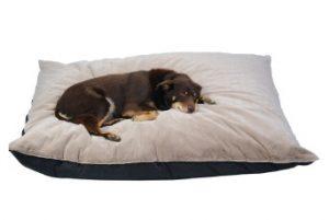 Xlarge Floor cushion